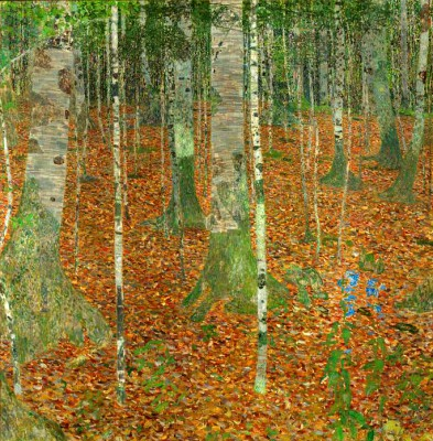 BIRKENWALD (BIRCH FOREST). - Gustav Klimt