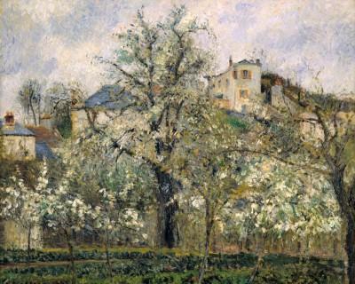 Potager et arbres en fleurs, printemps, Pontoise - Camille Pissarro