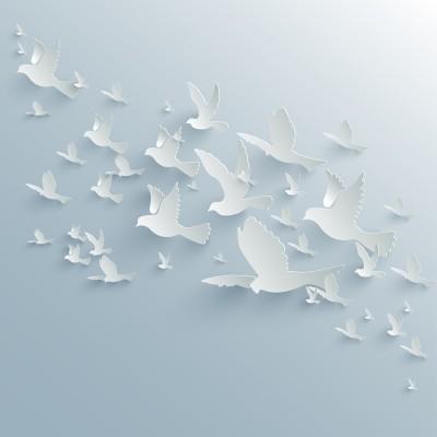Ptaki 3D
