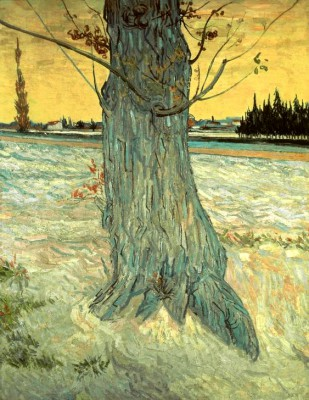 The Tree - Vincent van Gogh