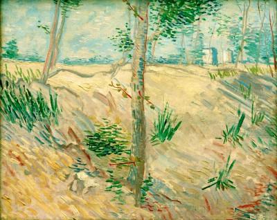 Tree trunks in sunlight - Vincent van Gogh