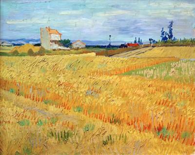Wheat Field - Vincent van Gogh