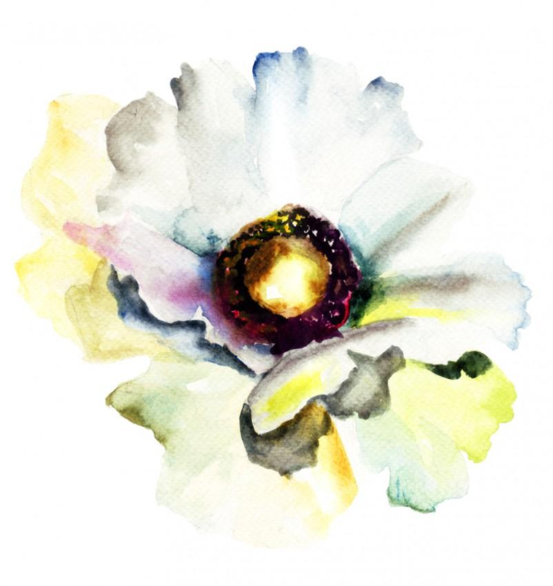 Obraz 'Kwiat'